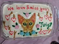 An iced cake with Twigs drawn in colored icing, twigs and hearts around it, and the text: 'We love and miss you!'